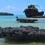 Stefano Benazzo, peschereccio, Turks & Caicos, 2018
