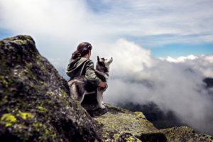 Viaggiare con gli amici animali