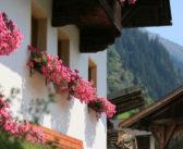 Vacanze diverse negli agriturismi del Gallo Rosso in Alto Adige