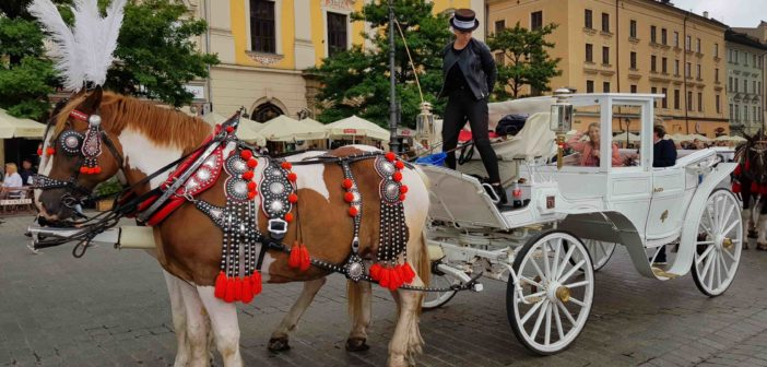 Cracovia super star. La città polacca conserva capolavori d'arte unici ed è Capitale della cultura  gastronomica 2019