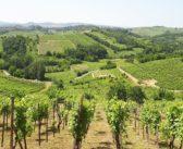 La scoperta di un Oltrepò Biodiverso attraverso vini, borghi e colline
