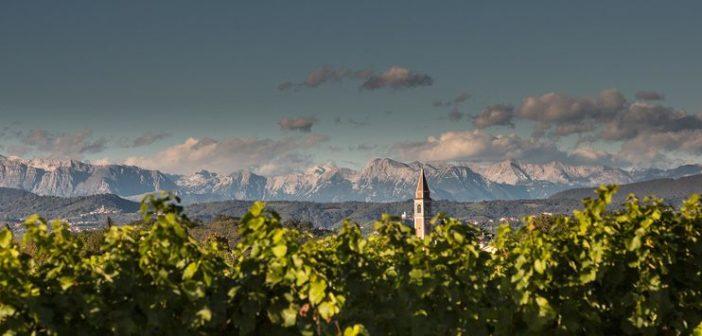 Sulle strade dei vini in Collio: da Spessa di Capriva ad Aiello del Friuli