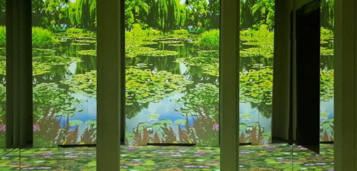 Riapre la stagione delle grandi mostre. A Bologna 'Monet e gli impressionisti' dal Museo Marmottan