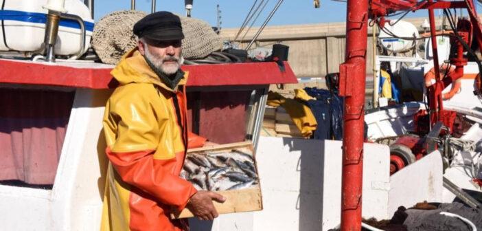 Una iniziativa di vari chef europei a sostegno del consumo di pesce e frutti di mare