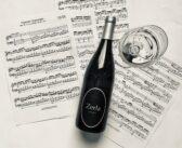 Igor, il musicista trentino che parla con i vini